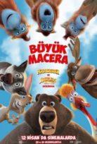 Ağaçkakan Woody Hd izle Türkçe Dublajlı